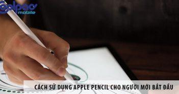 Cách sử dụng Apple Pencil cho người mới bắt đầu
