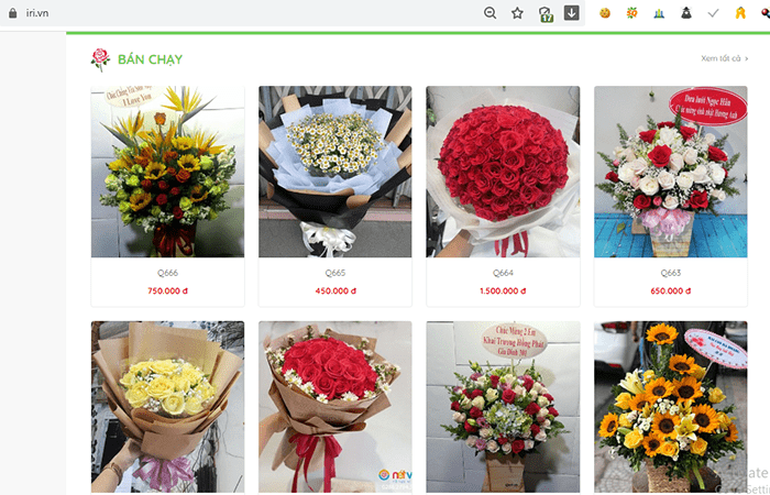 iRI.VN - Hoa tươi Nét Việt
