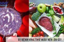 Ung thư máu nên ăn gì, dùng nấm lim xanh được không?